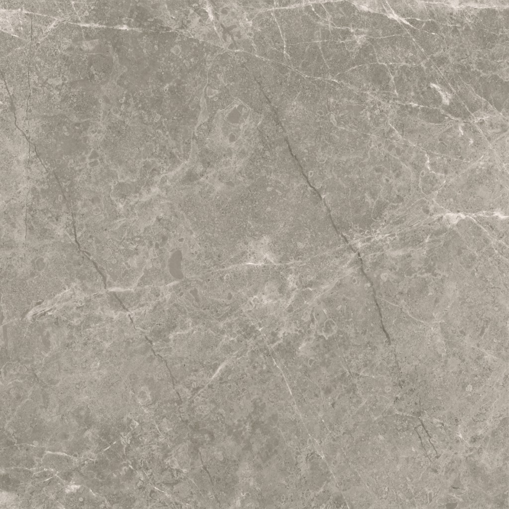 Ice Stone Taupe 60x60 4